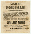 Negroes for sale